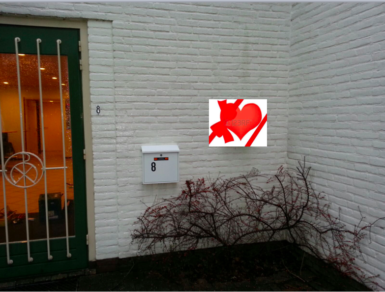 Wethouder Koops zal op maandag 8 februari te 14:00 uur de eerste AED-buitenkast in Breukelen onthullen en opent de RAVU de HartslagNu app voor de gemeente stichtse Vecht